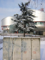 <h5>Thanks francois</h5><p>&lt;a href=&quot;http://commons.wikimedia.org/wiki/File:Piece_of_Berlin_Wall_in_front_of_the_European_Court_of_Human_Rights,_Strasbourg.jpg#mediaviewer/File:Piece_of_Berlin_Wall_in_front_of_the_European_Court_of_Human_Rights,_Strasbourg.jpg&amp;quot;&quot; target=&quot;_blank&quot;&gt;Piece of Berlin Wall in front of the European Court of Human Rights, Strasbourg&lt;/a&gt;&quot; by &lt;a class=&quot;external text&quot; href=&quot;http://www.flickr.com/photos/54576824@N00&quot; target=&quot;_blank&quot; rel=&quot;nofollow&quot;&gt;francois&lt;/a&gt; from Strasbourg, france - &lt;a class=&quot;external text&quot; href=&quot;http://www.flickr.com/photos/frenchy/79366435/&quot; target=&quot;_blank&quot; rel=&quot;nofollow&quot;&gt;Part of the berlin wall in front of the Human&#039;s Right building&lt;/a&gt;. Licensed under &lt;a title=&quot;Creative Commons Attribution 2.0&quot; href=&quot;http://creativecommons.org/licenses/by/2.0&quot; target=&quot;_blank&quot;&gt;CC BY 2.0&lt;/a&gt; via &lt;a href=&quot;//commons.wikimedia.org/wiki/&quot; target=&quot;_blank&quot;&gt;Wikimedia Commons&lt;/a&gt;.</p>